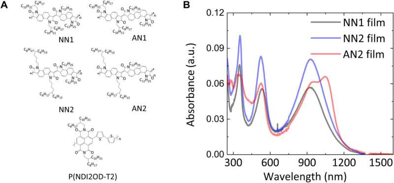 Charge transport physics of a unique class of rigid-rod conjugated polymers