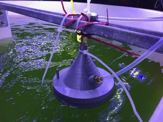 Los químicos desarrollan una nueva tecnología que detecta la salud de los cultivos de algas