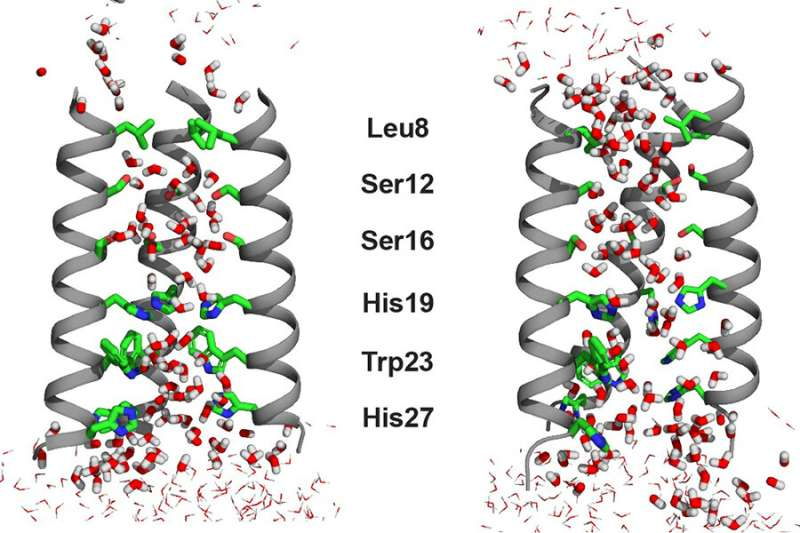 Chemists gain new insights into the behavior of water in an influenza virus channel