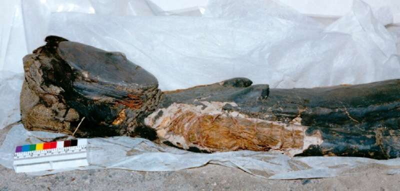 Chinchorro mummies were either painted red, black or wrapped in bandages