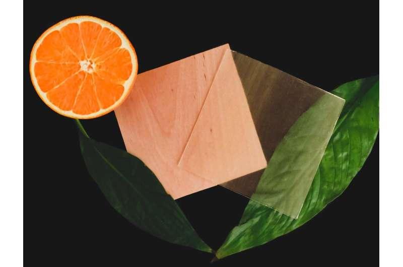 Citrus derivative makes transparent wood 100 percent renewable