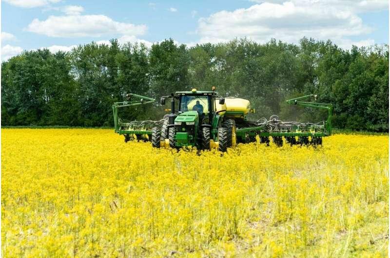 Un aire más limpio ha impulsado los rendimientos de maíz y soja en EE. UU., Según muestra una investigación dirigida por Stanford