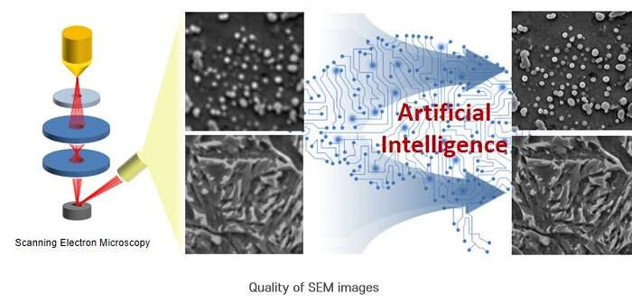 Clearer and refocused SEM images