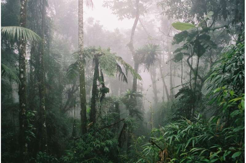 Climate change impacts conservation sites across the Americas