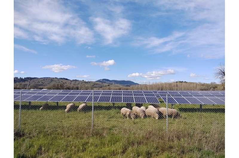 Combining solar energy and agriculture to mitigate climate change, assist rural communities
