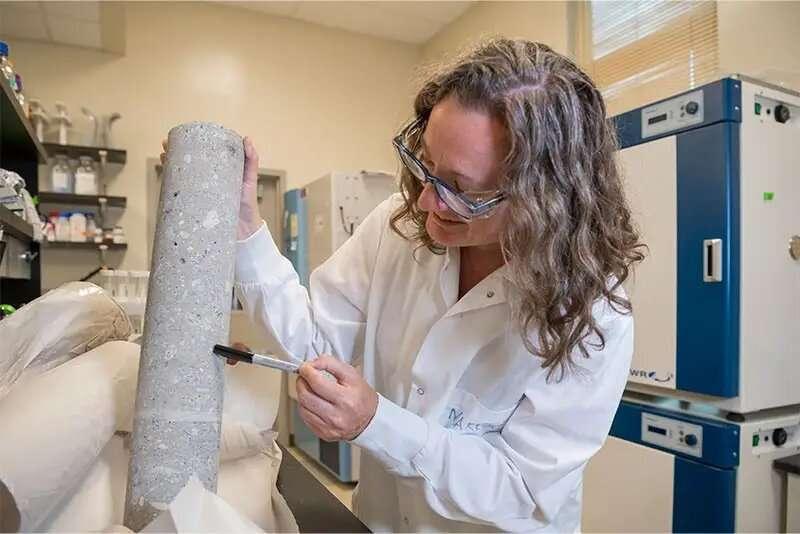 Bacterias concretas y duras que persisten obstinadamente en el interior