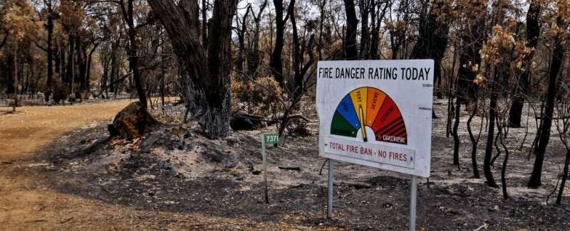 Coping with bushfire fallout