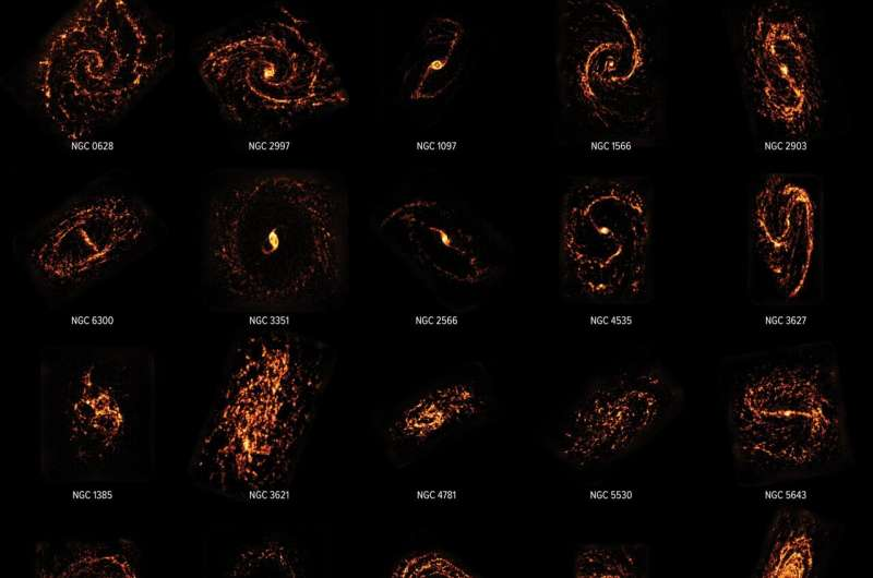 Cosmic cartographers map nearby Universe revealing the diversity of star-forming galaxies