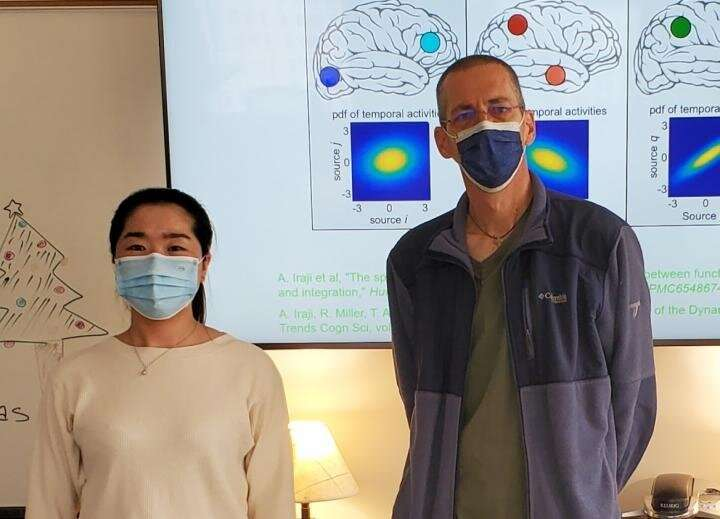 COVID-19 alters gray matter volume in the brain, new study shows