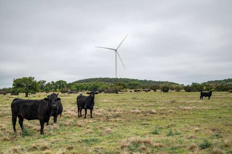 Cows and turbines coexist on Bob Helmers's ranch in Texas, where leaders such as former governor George W Bush, later a US presi