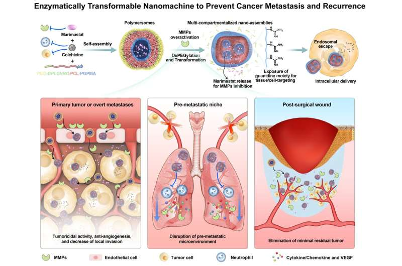Creating smart nanomachines to detect highly invasive cancer after surgery and prevent recurrence – cancer metastasis and recurr