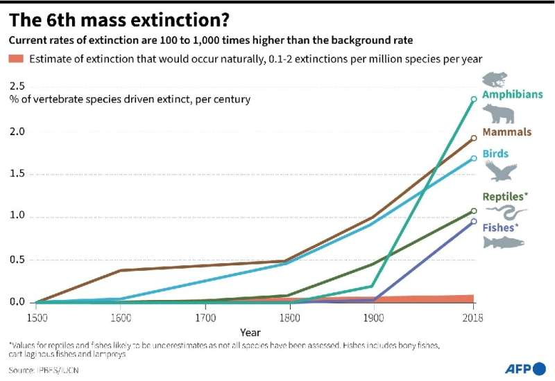 Current extinction rates are 100 to 1,000 times greater than the normal 'background' rate