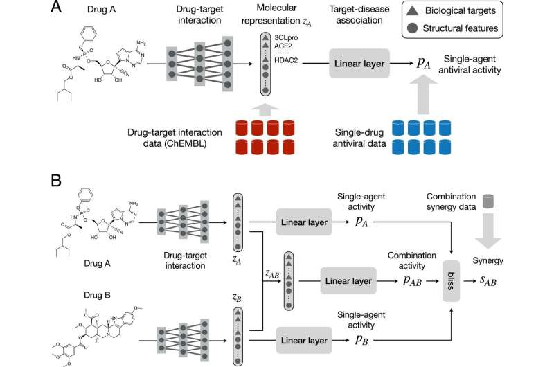 Deep learning helps predict new drug combinations to fight COVID-19