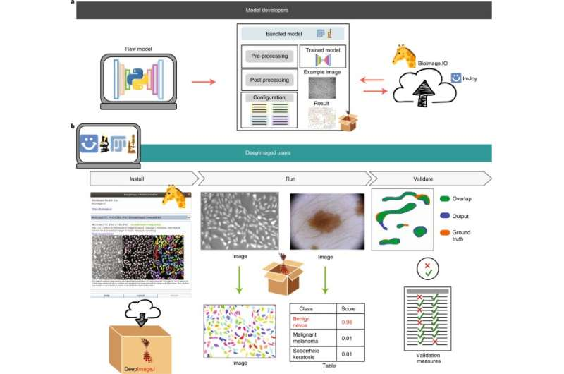 Deep-learning–based image analysis is now just a click away