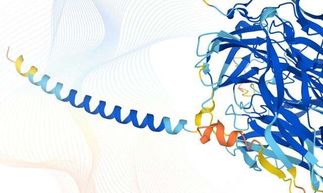 DeepMind and EMBL release the most complete database of predicted 3D structures of human proteins