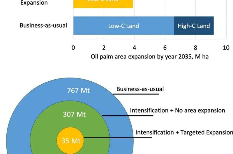 Defining climate-smart pathways towards tree crop yield intensification