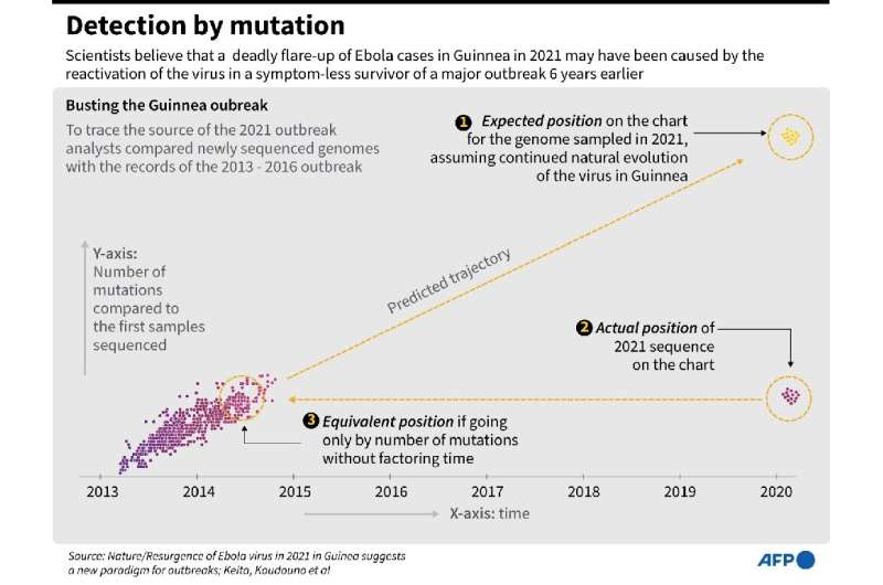 Detection by mutation