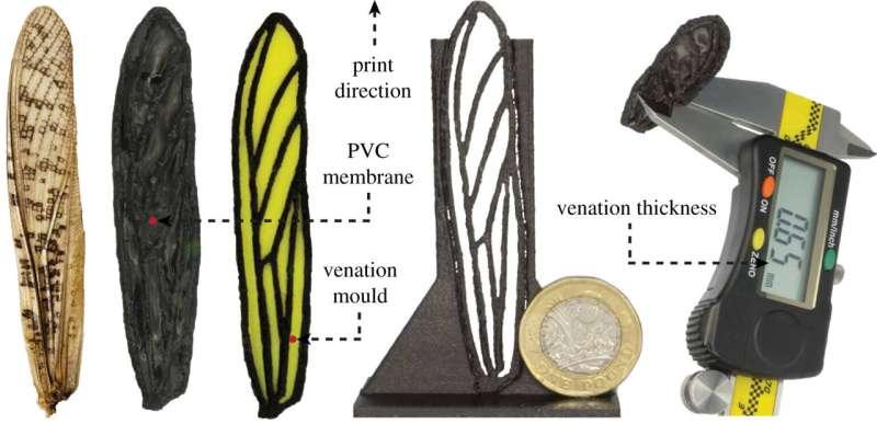 Développer un moyen de fabriquer des ailes de drones avec des capacités d'aile de criquet