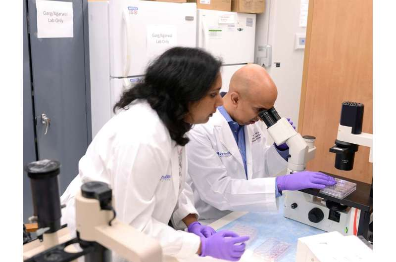 Diabetes researchers show gene editing can turn storage fat cells into energy-burning fat cells