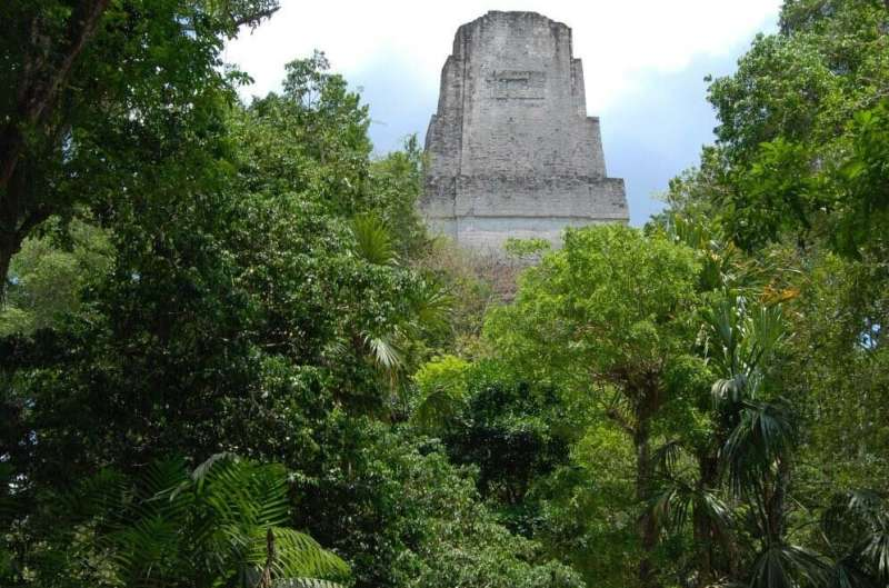 Did the ancient Maya have parks?