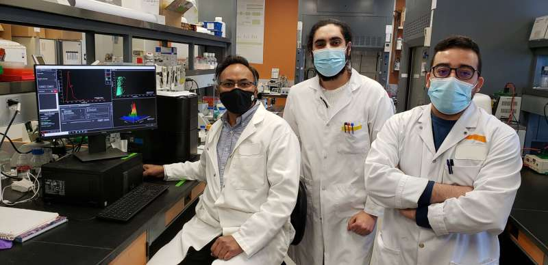 Discovery of early plasma biomarkers for Alzheimer's disease
