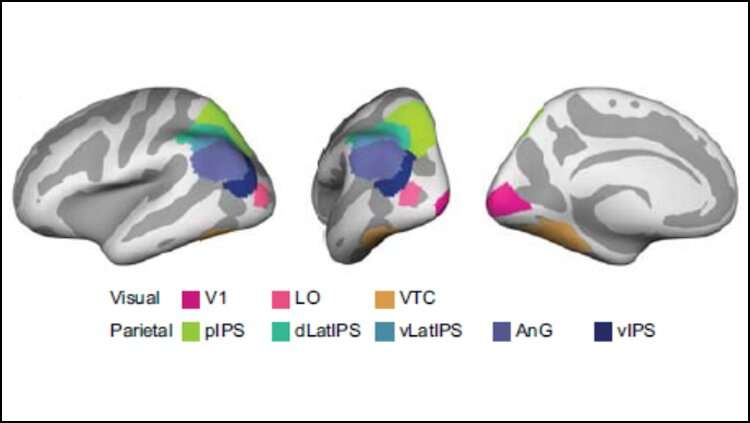 Distorting memories helps the brain remember