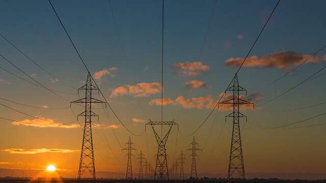 Diversity can prevent failures in large power grids
