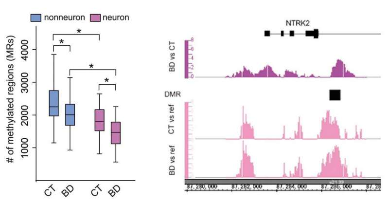 DNA methylation changes and characteristics in neurons of bipolar disorder patients