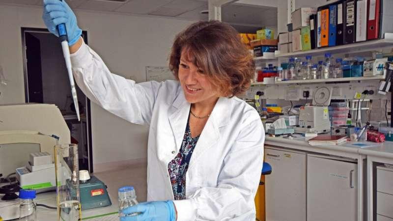 DNA regulator offers new hope for Hodgkin lymphoma treatment