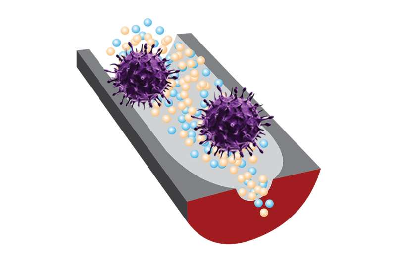 DNA sensor quickly determines whether viruses are infectious