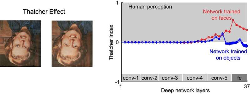 """Do deep networks """"see"""" as well as humans?"""