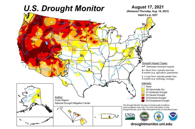 Drought makes its home on the range