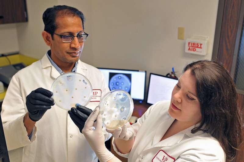 Drug-resistant germ packs a punch for U.S.travelers