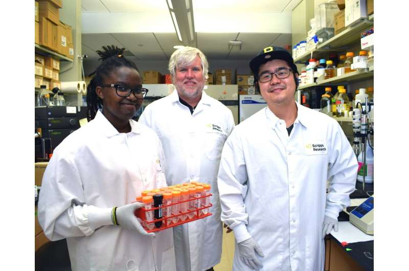 Dual-action breast cancer compounds aim to overcome common drug-resistance issues
