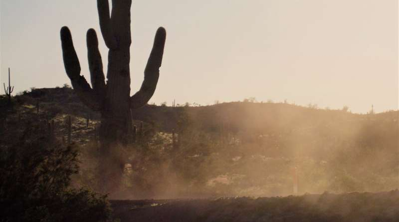 Dust storms and valley fever in the American West
