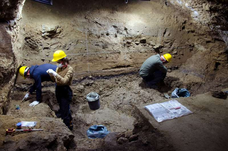 Early Homo sapiens groups in Europe faced subarctic climates