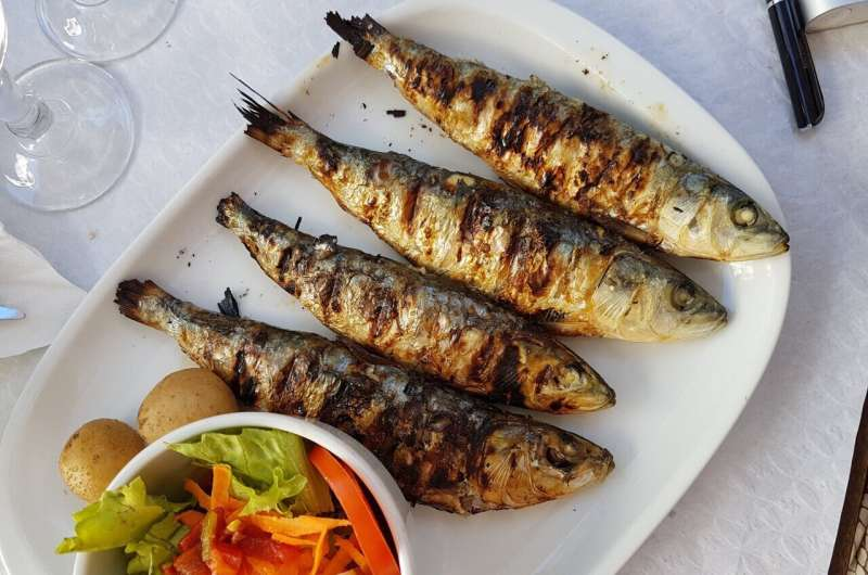 Eating sardines regularly helps prevent type 2 diabetes