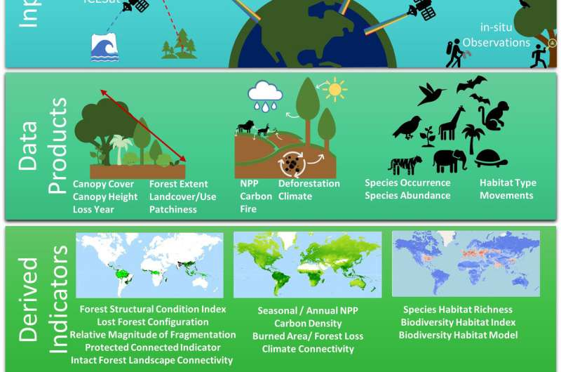 Ecologists outline methods for reaching global biodiversity targets