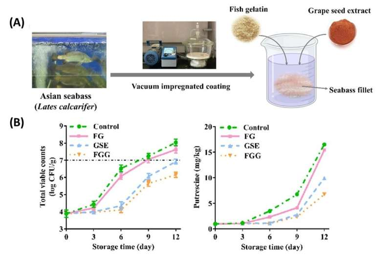 Edible coating for seabass preservation
