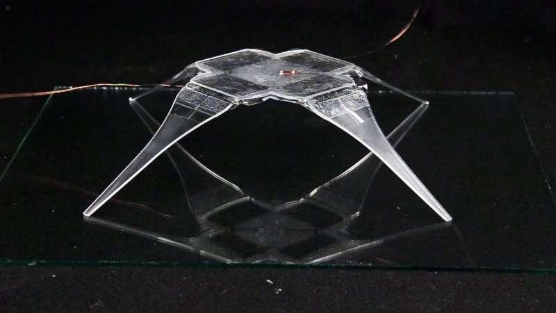 Electrohydraulic arachno-bot a fascinating lightweight