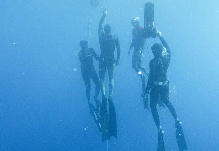Elite freedivers have brain oxygen levels lower than seals