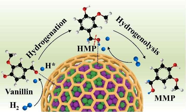 Encapsulated NiCo alloy nanoparticles catalyzing HDO reactions