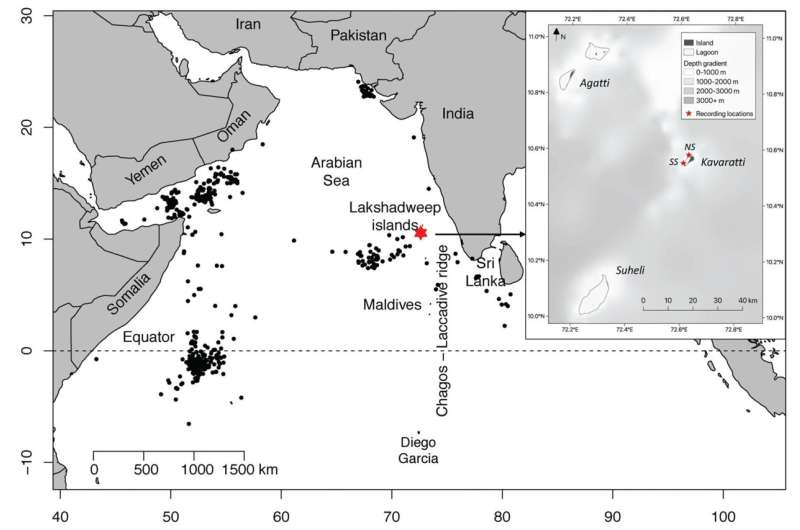 Endangered blue whales recorded off southwest coast of India