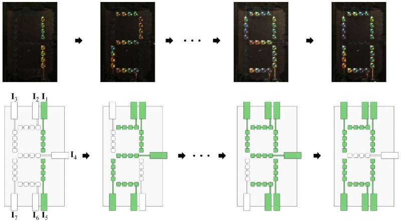 Engineering a polymer network to act as active camouflage on demand