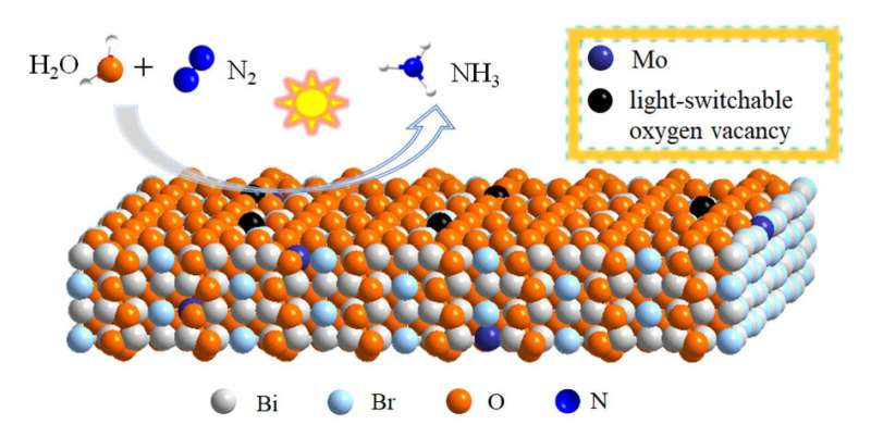 Enhanced ambient ammonia photosynthesis by Mo-doped Bi5O7Br nanosheets with light-switchable oxygen vacancies