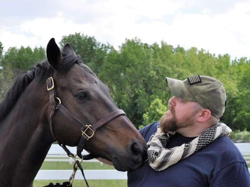 Equine therapy: horses help veterans struggling with PTSD