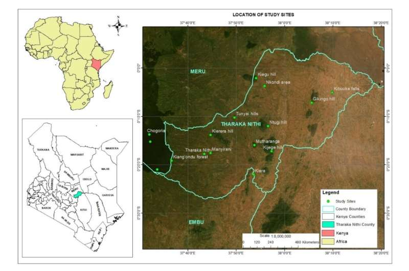 Ethnobotanical survey enlightens traditional knowledge, use and conservation of plants in tharaka-nithi county of kenya