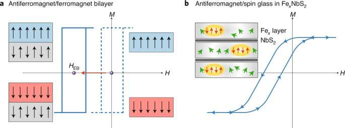 Exchange bias set in a spin-glass phase could arise in a disordered antiferromagnet