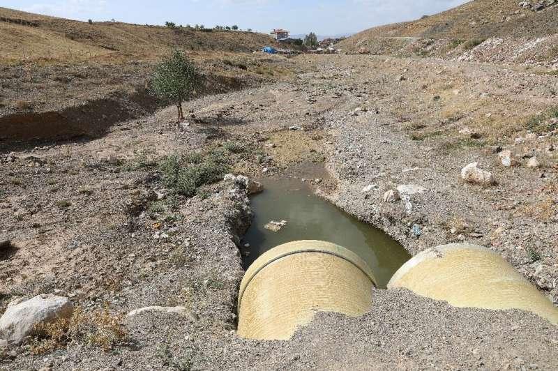 Los expertos acusan al presidente Recep Tayyip Erdogan de no hacer lo suficiente para abordar los problemas ambientales urgentes en el país.