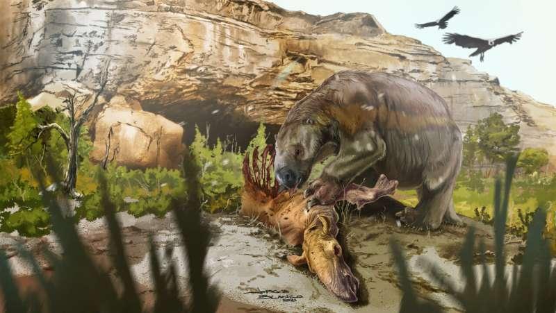 Probabilmente i bradipi di terra estinti mangiavano carne con le verdure